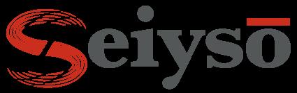 Seiyso Technology Logo